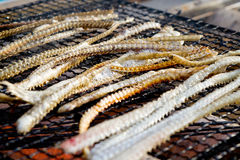 Delicious grill fish bone Royalty Free Stock Photos