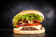 Delicious grilled burger Stock Images