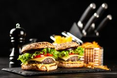 Delicious grilled burgers Stock Photography