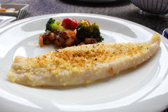 Delicious grilled Cod on a plate Stock Image