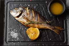 Delicious grilled dorado or sea bream fish with lemon slices, spices, rosemary on dark stone. Grilled sea fish with royalty free stock image
