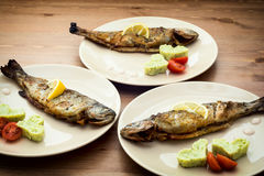 Delicious grilled fish Stock Image