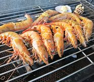 Delicious grilled king prawns. Ten delicious grilled king prawns Stock Image