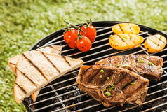 Delicious grilled lunch on a barbecue Royalty Free Stock Images