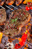 Delicious grilled meat with vegetable on a barbecue grill. Assorted delicious grilled meat with vegetable on a barbecue grill Royalty Free Stock Photos