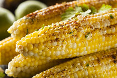 Delicious Grilled Mexican Corn stock images