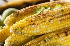 Delicious Grilled Mexican Corn Royalty Free Stock Photos