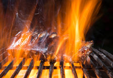 Delicious grilled pork ribs on a barbecue grill. Royalty Free Stock Images