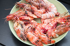 Delicious grilled prawns Royalty Free Stock Images