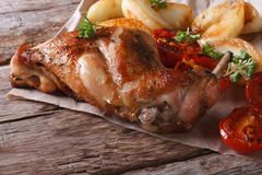 Delicious grilled rabbit leg with apples and tomatoes Royalty Free Stock Photo