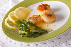 Delicious grilled scallops with sauce and lemon on a plate. hori Stock Photography