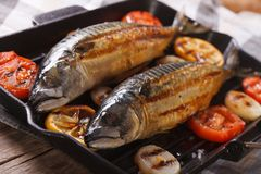 Delicious grilled sea fish and vegetables in a pan grill Stock Images