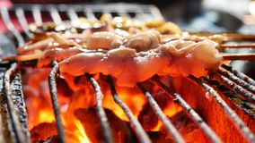 Delicious grilled squid stock image