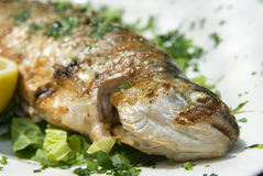 Delicious grilled trout on a plate Stock Photo