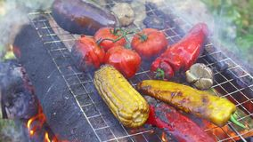 Delicious grilled vegetables with fire, water pouring stock video