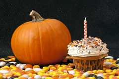 Delicious halloween  cupcake  with pumpkin Royalty Free Stock Photos