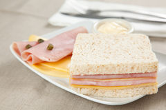 Delicious ham and cheese sandwich Stock Image