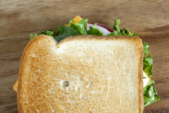Delicious ham sandwich stock image