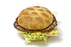 Delicious hamburger Royalty Free Stock Photo