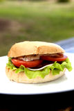 Delicious Hamburger. Delicious Cheeseburger With Salad And Tomato On A Plate Royalty Free Stock Image