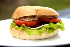 Delicious Hamburger. Delicious Cheeseburger With Salad And Tomato On A Plate Royalty Free Stock Photo