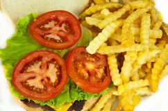 Delicious hamburger. With french fries Royalty Free Stock Photos