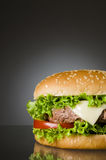 Delicious hamburger Stock Photos