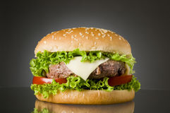 Delicious hamburger Royalty Free Stock Image