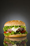 Delicious hamburger Royalty Free Stock Image