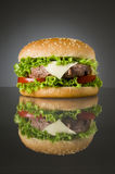 Delicious hamburger Royalty Free Stock Images