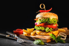 Delicious hamburger with French fries Stock Photos
