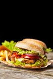 Delicious hamburger and fries Royalty Free Stock Images