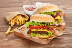 Delicious hamburger and fries Royalty Free Stock Photo