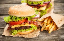 Delicious hamburger and fries Royalty Free Stock Photo