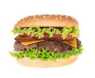Delicious hamburger Royalty Free Stock Photo