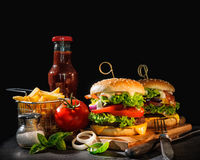 Delicious hamburgers with french fries Royalty Free Stock Photos