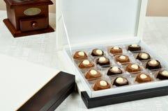 Delicious hazelnut chocolate Stock Image