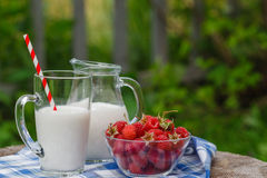 Delicious and healthy breakfast in the garden Stock Images