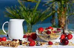 A delicious and healthy breakfast in the garden of muesli with milk, nuts Royalty Free Stock Images