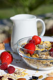 A delicious and healthy breakfast in the garden of muesli with milk, nuts Royalty Free Stock Image