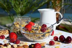 A delicious and healthy breakfast in the garden of muesli with milk Royalty Free Stock Photography