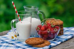 Delicious and healthy breakfast in the garden Royalty Free Stock Images