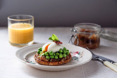 Delicious and healthy breakfast - sandwich with onion jam, poached egg  vegetables Royalty Free Stock Photography