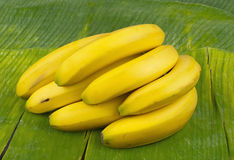 Delicious healthy fresh yellow banana Royalty Free Stock Photo