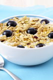 Delicious and healthy granola Royalty Free Stock Photo