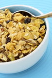 Delicious and healthy granola Royalty Free Stock Photos
