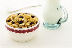Delicious and healthy granola Royalty Free Stock Images