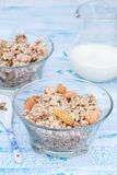 Delicious and healthy granola or muesli with nuts and raisins. Delicious and healthy granola or muesli with nuts, raisins and jug with milk Stock Images