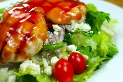Delicious healthy meal close u Royalty Free Stock Photography