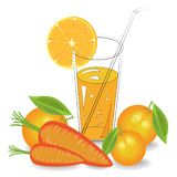Delicious, healthy and medicinal drink. In a glass of natural vegetable juice ripe carrots and fruits orange, mandarin. Vector royalty free illustration